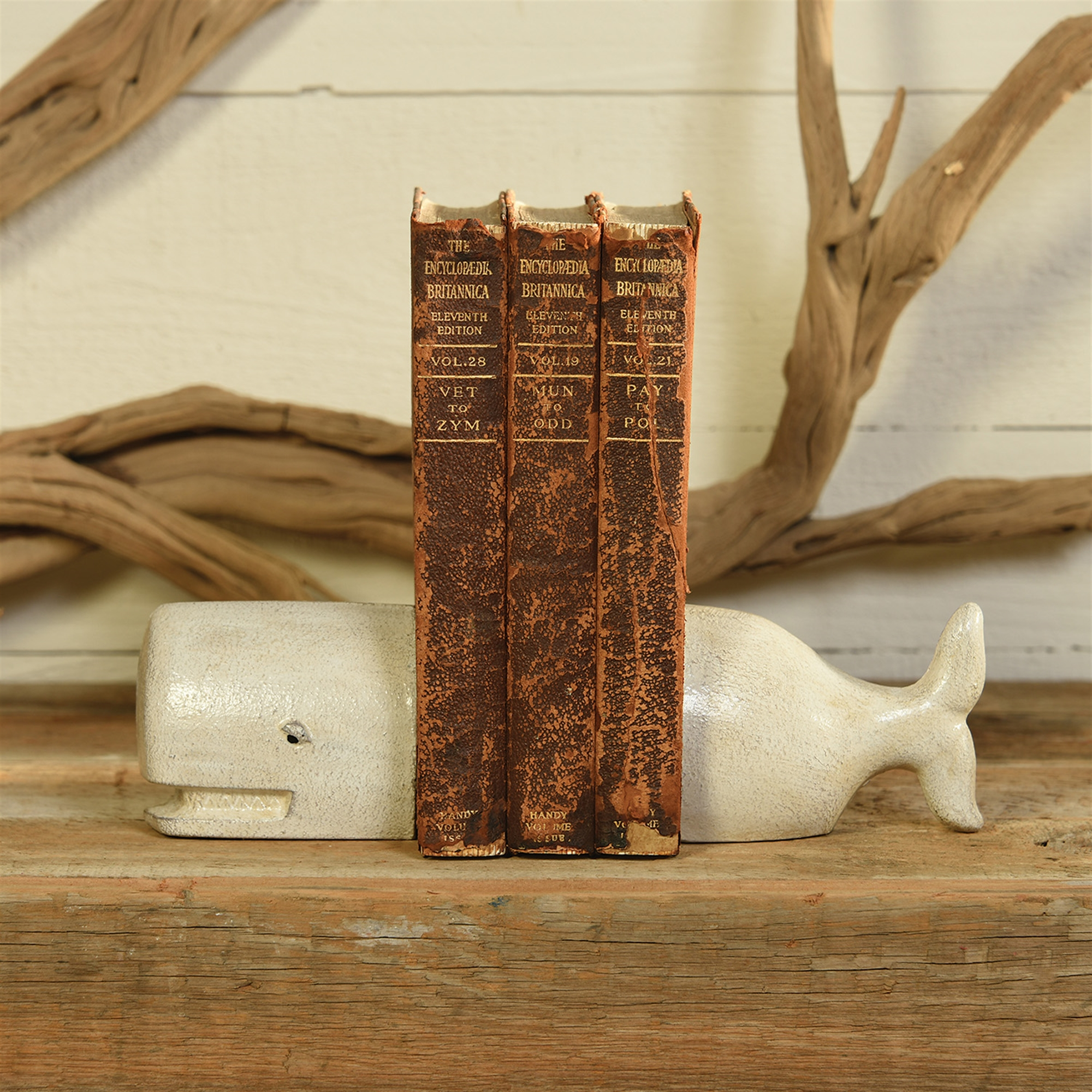 1604-6-Whale Bookends - Cast Iron - White by Homart