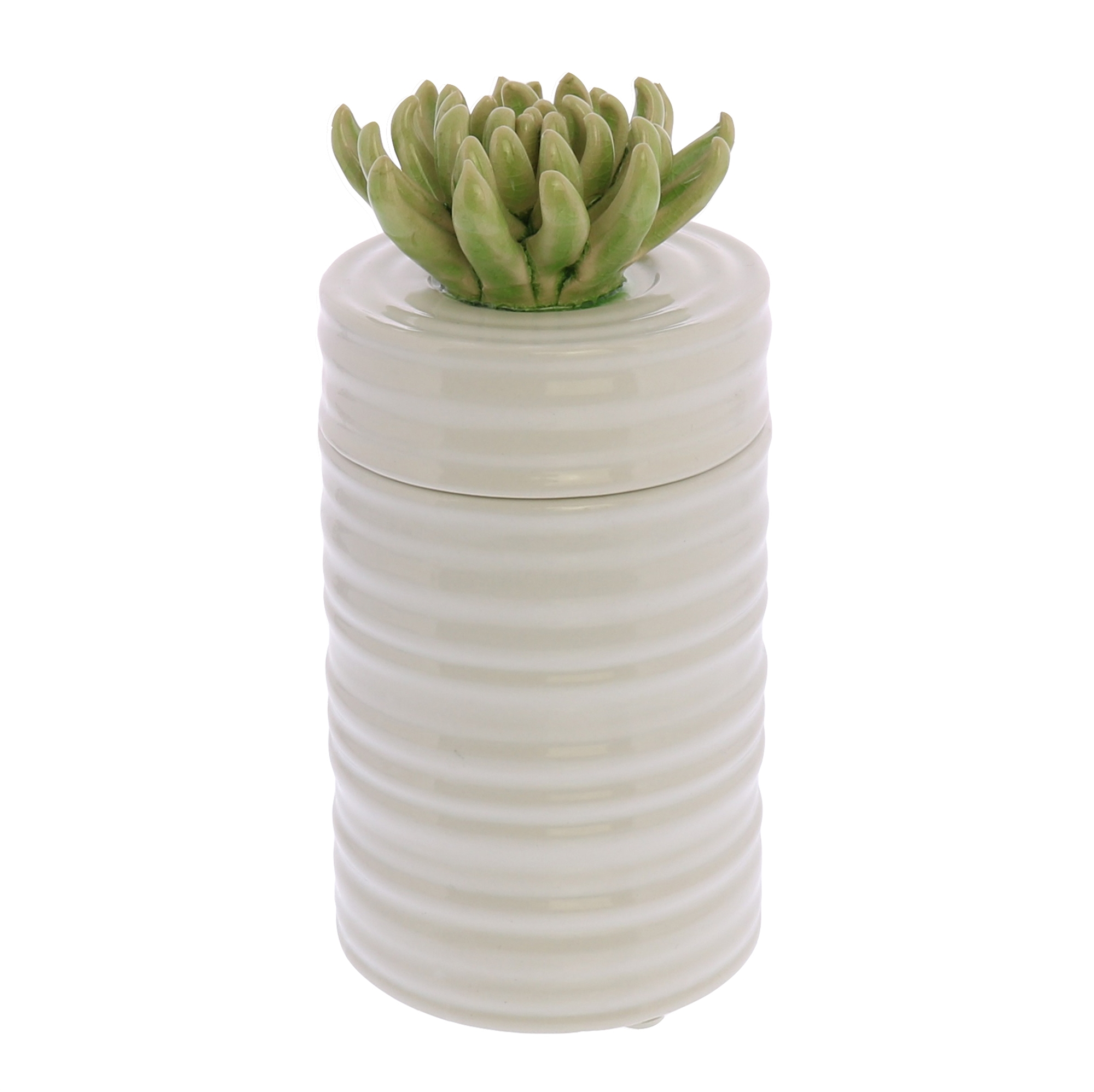 7679-3 - Succulent Canister - Tall - Green by HomArt